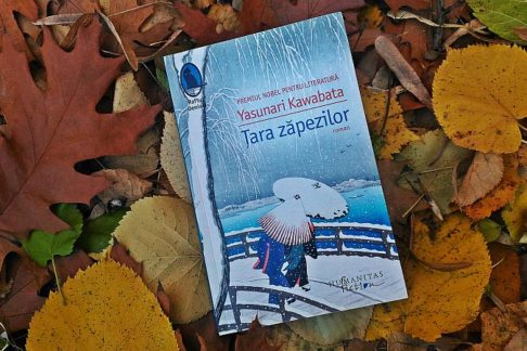 tara-zapezilor_book-review