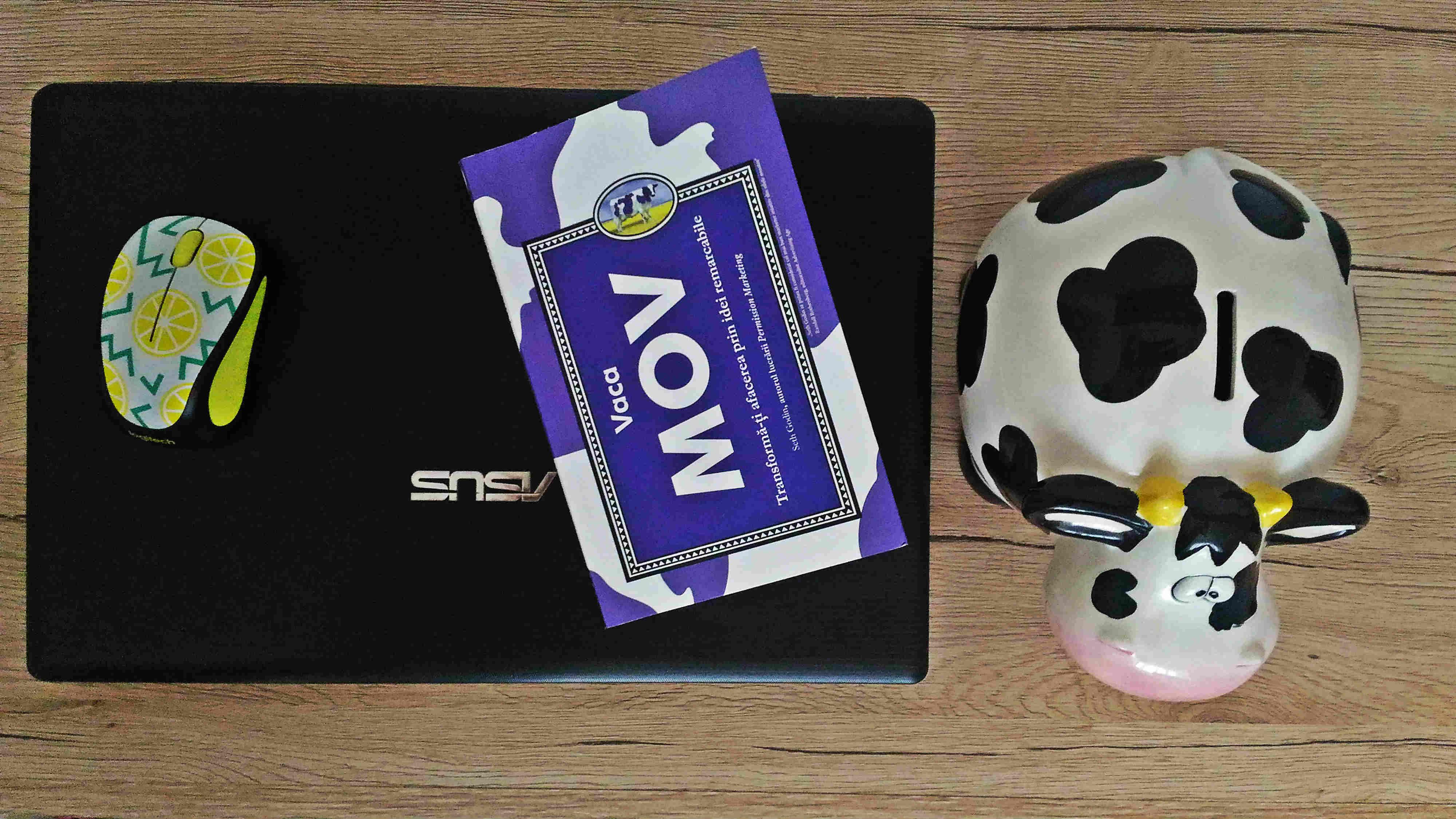 Vaca Mov, Seth Godin
